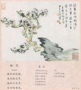 """王安石《梅花》""""遥知不是雪,为有暗香来""""古诗赏析与注释翻译"""