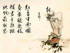 """王维《相思》""""红豆生南国,春来发几枝?""""全诗翻译与赏析"""