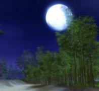 """杨万里《好事近》""""如今才是十三夜,月色已如玉""""全词翻译赏析"""