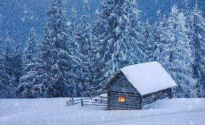 有关描写雪的诗句_有关描写雪的古诗句鉴赏-学习网